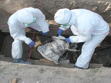 Forensic Science and Forensic Anthropology