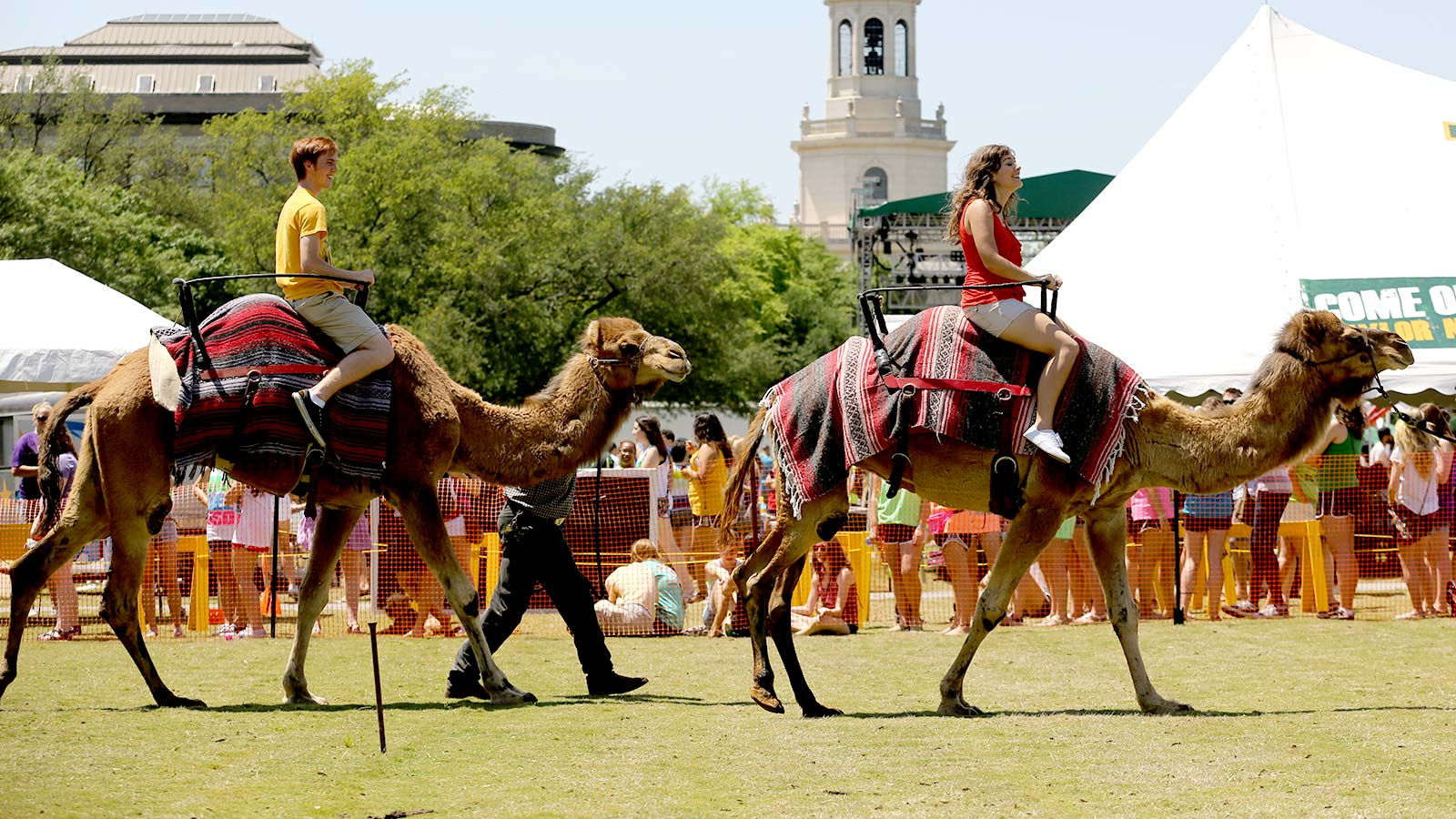 Concerts, games, competitions, and even camels highlight the annual Day of the Bear festivities.