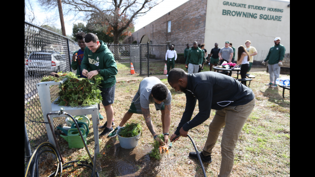 CK Baylor Football at Community Garden