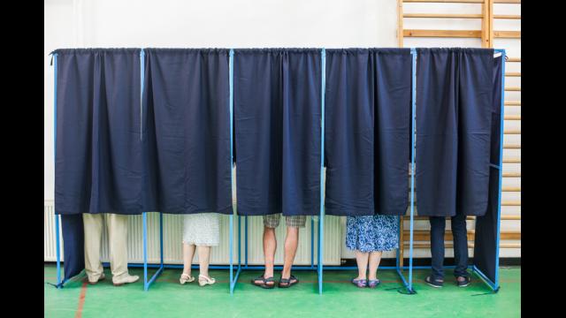 schools and vote