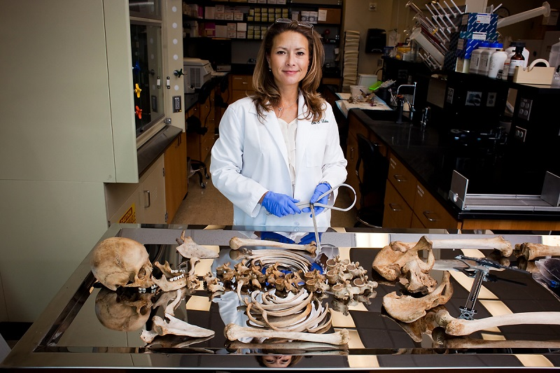 Forensic Science And Forensic Anthropology Department Of Anthropology Baylor University