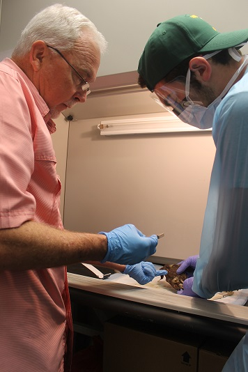 Senior Lecturer James Huggins working on a specimen with a student