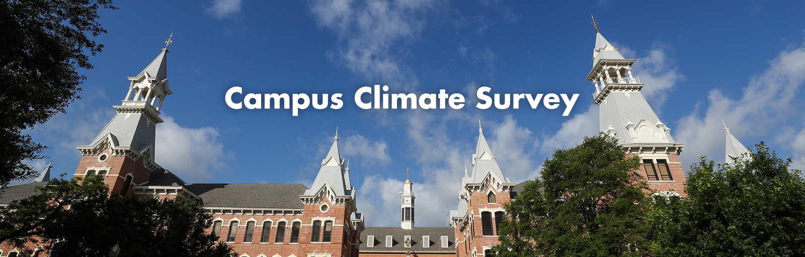 mc_diversity-campus-climate-survey