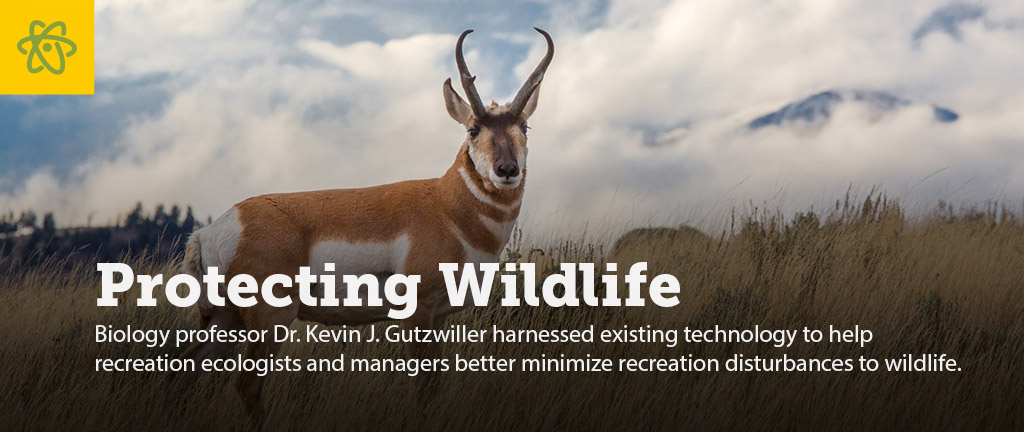 Slider - Protecting Wildlife