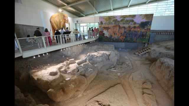 Waco Mammoth