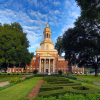 Robust Year of Giving to Baylor Lays Foundation for Growth