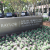 Baylor School of Nursing to Celebrate