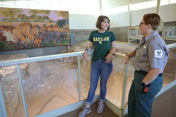 The department of Museum Studies in cooperation with the City of Waco offers a graduate assistantship at the Waco Mammoth National Monument.