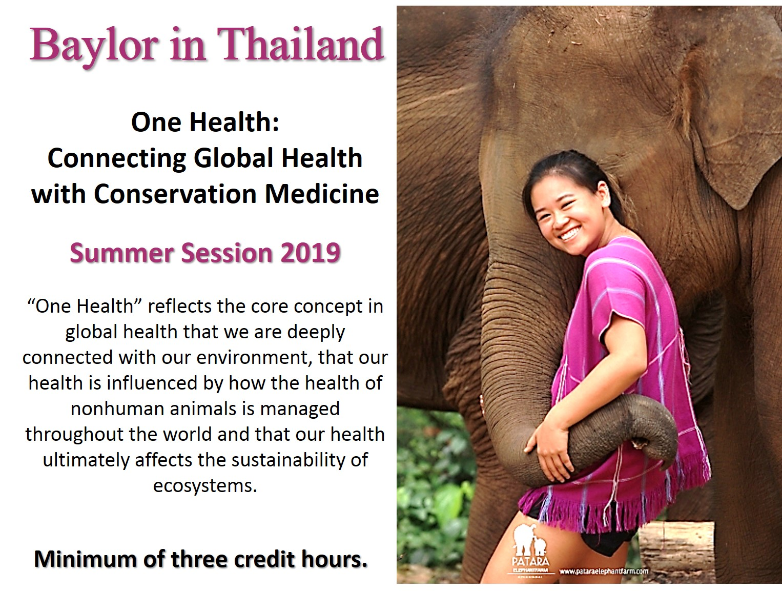 Thailand Field School