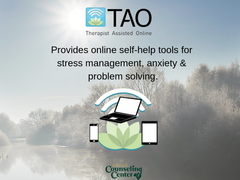 Therapy Assisted Online Self Help
