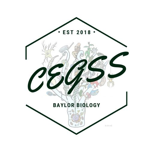 CEGSS Symposium