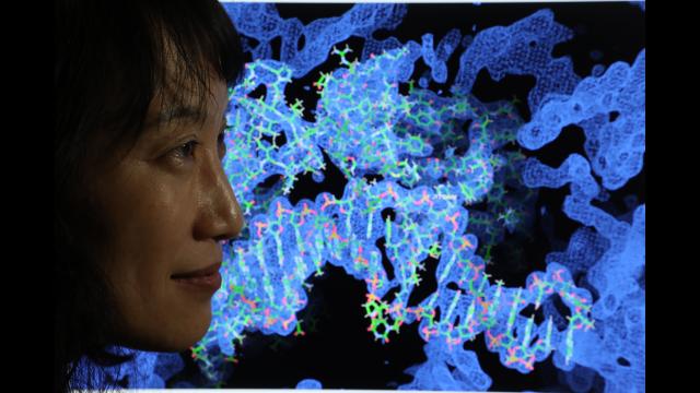 Full-Size Image: Dr. Jung-Hyun Min (2)