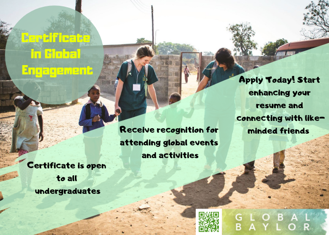 About the Global Baylor Initiative