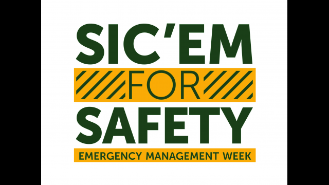 Full-Size Image: Sic for safety