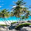 Baylor in Barbados