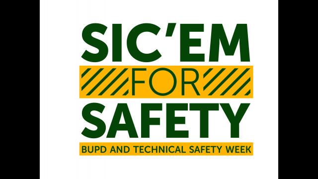 Sic em for Safety Technical Security