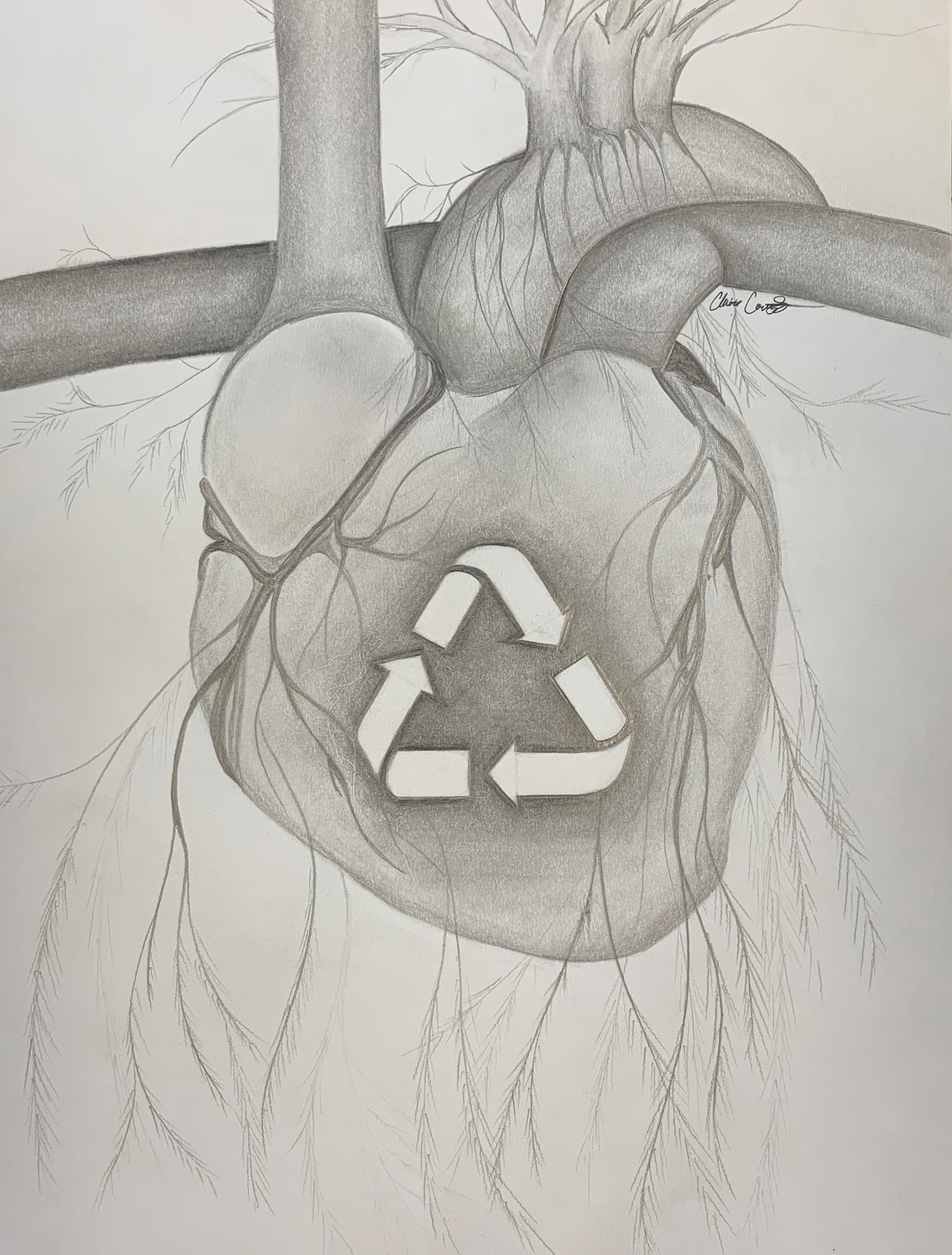 Heart Recycling