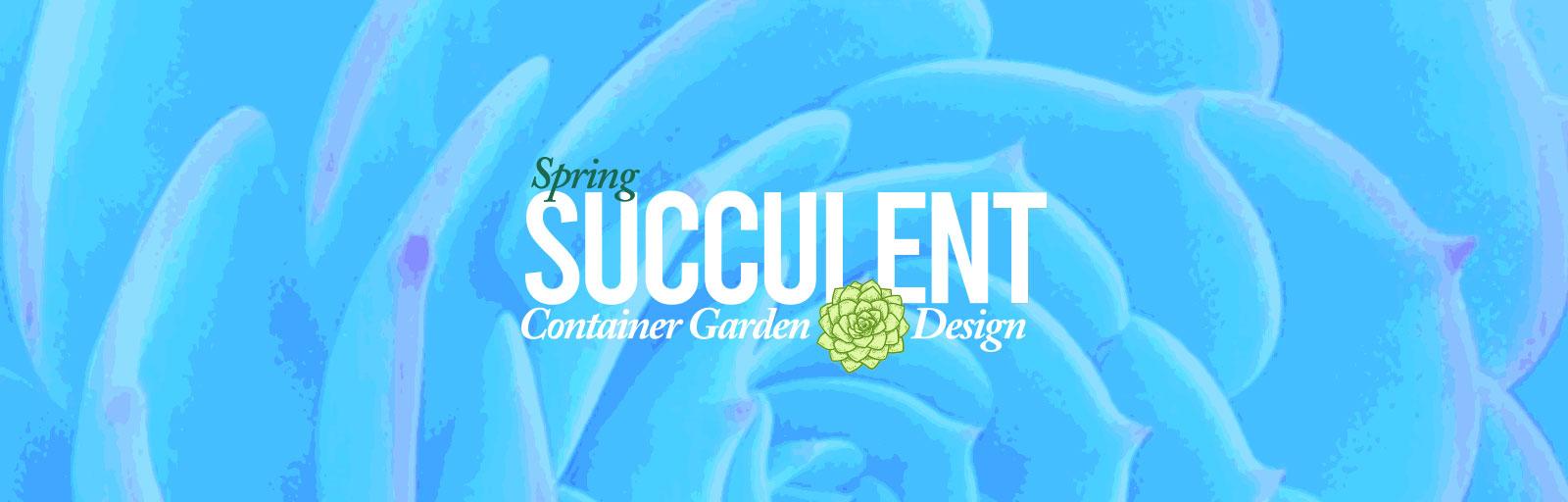succulent-webslider