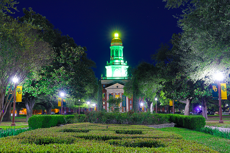 The Baylor Virtual Experience