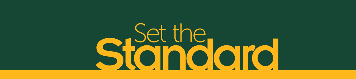 Set the Standard logo