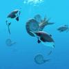 [Ichthyosaur]