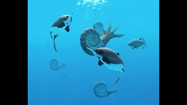 Full-Size Image: Ichthyosaur