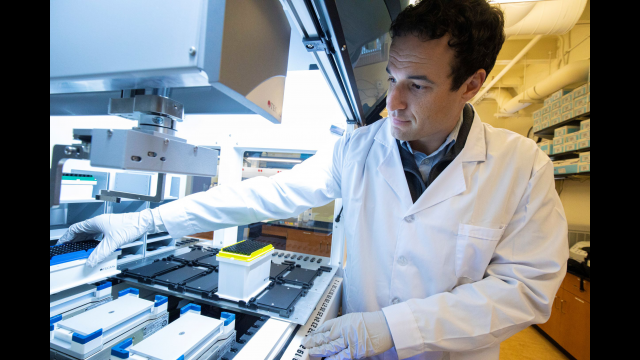 Full-Size Image: Dr. Sam Urlacher Lab