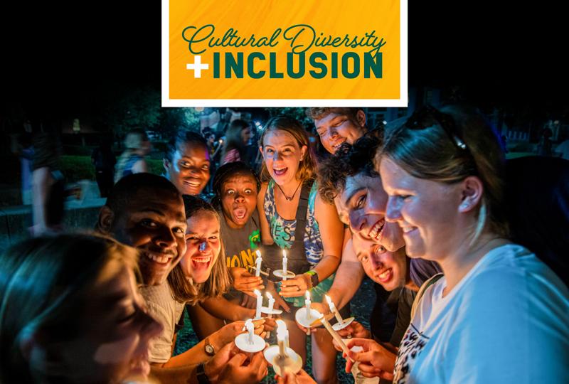 Cultural Diversity & Inclusion