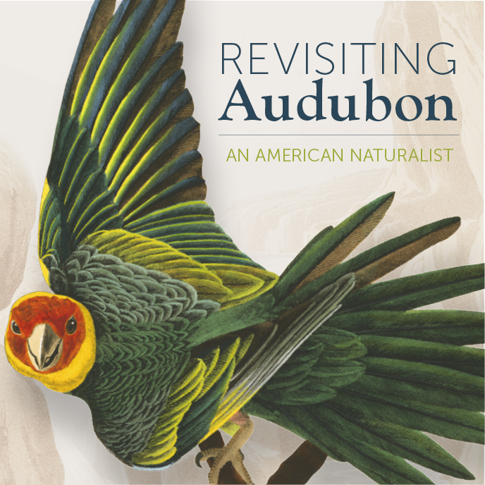 Revisiting Audubon