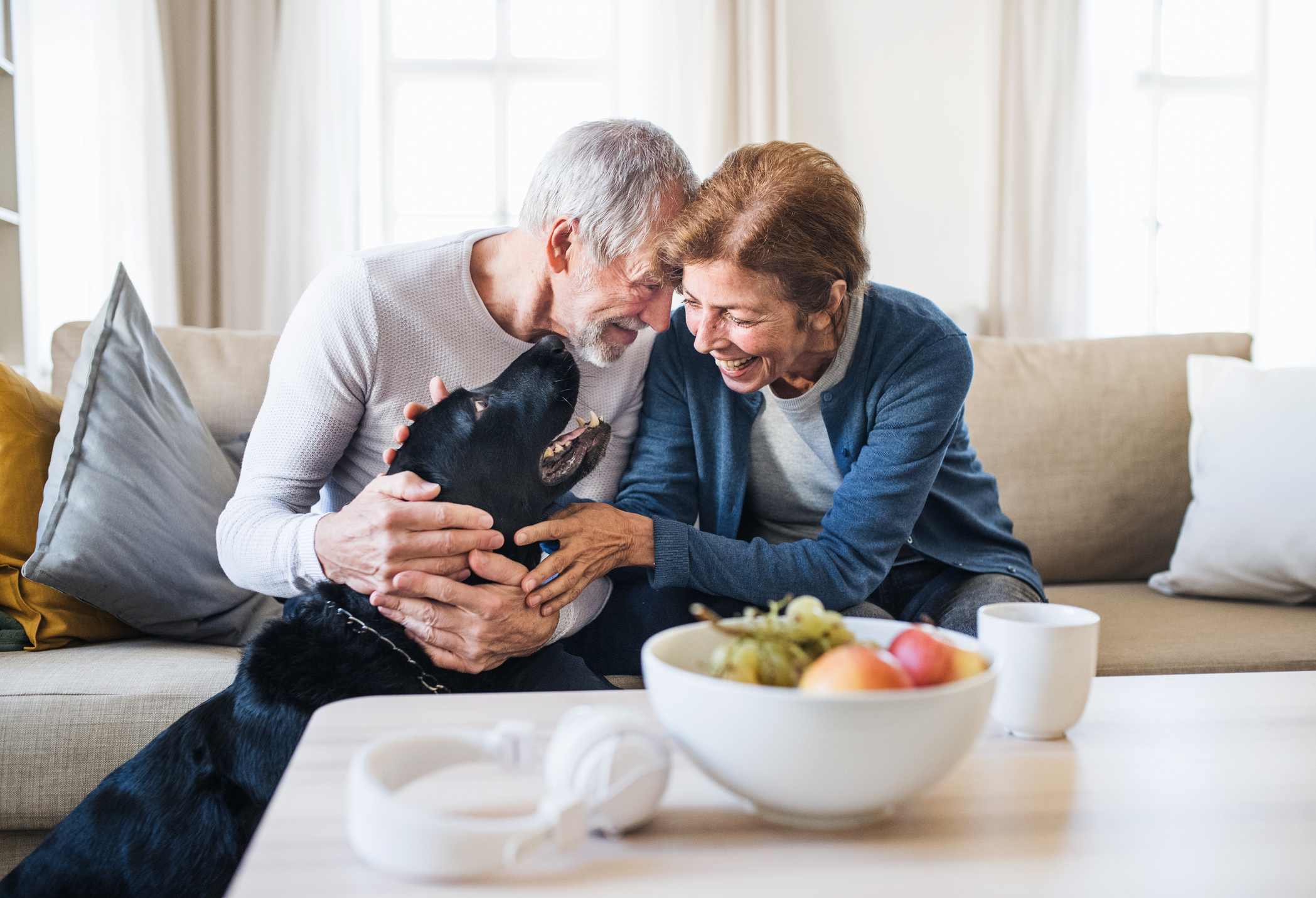 stock photo of older couple sitting on the sofa smiling and hugging dog