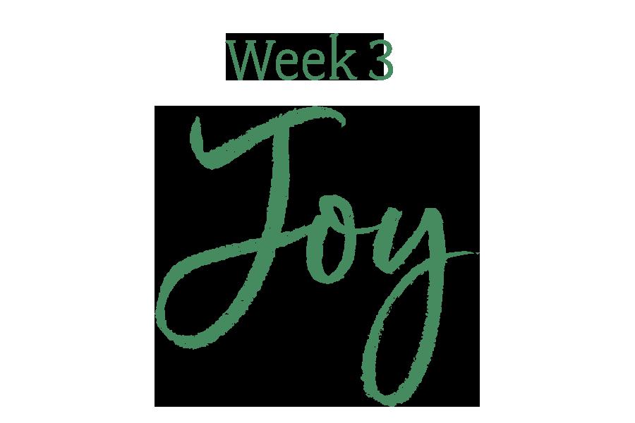 Week 3: Joy