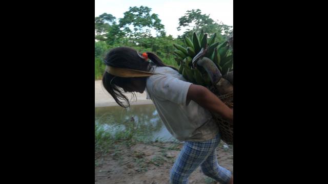 Full-Size Image: Amazonian and Rural Shuar Child