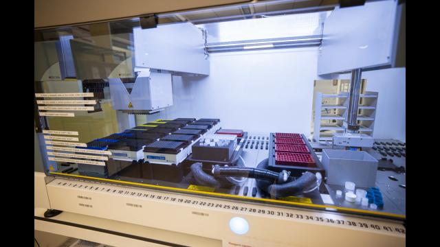 Full-Size Image: 4 - Photo Baylor MLD Lab Interior Lab Space