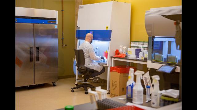Full-Size Image: 7. - Photo Baylor MLD Lab staff processing tests