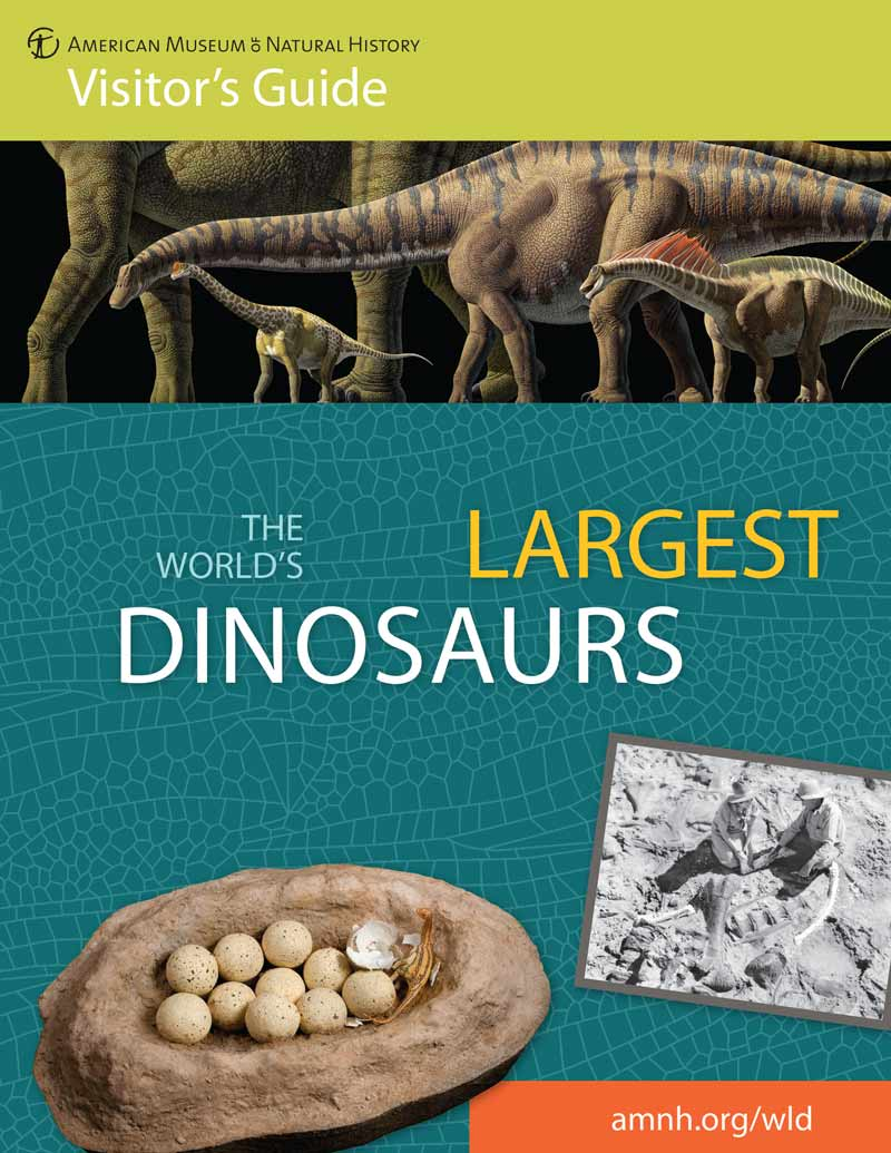 download The World's Largest Dinosaurs visitor's guide