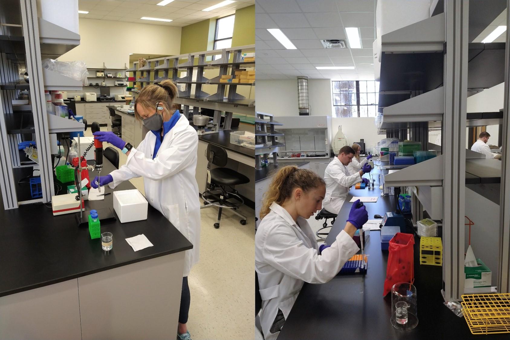 Mooney lab