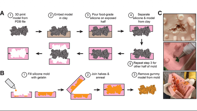 Full-Size Image: Candy model process