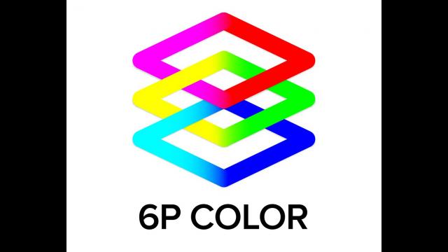Full-Size Image: 6P logo