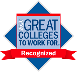 Chronicle: Great Colleges to Work for - 2020