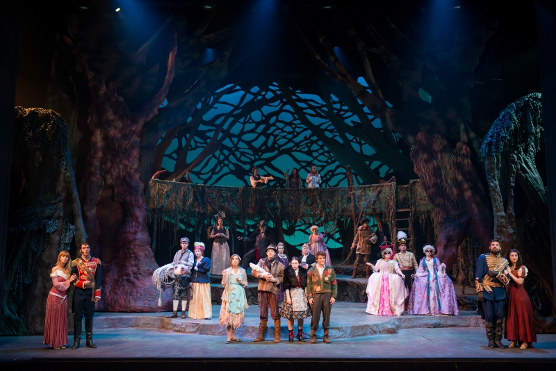 2014 Into the Woods 1