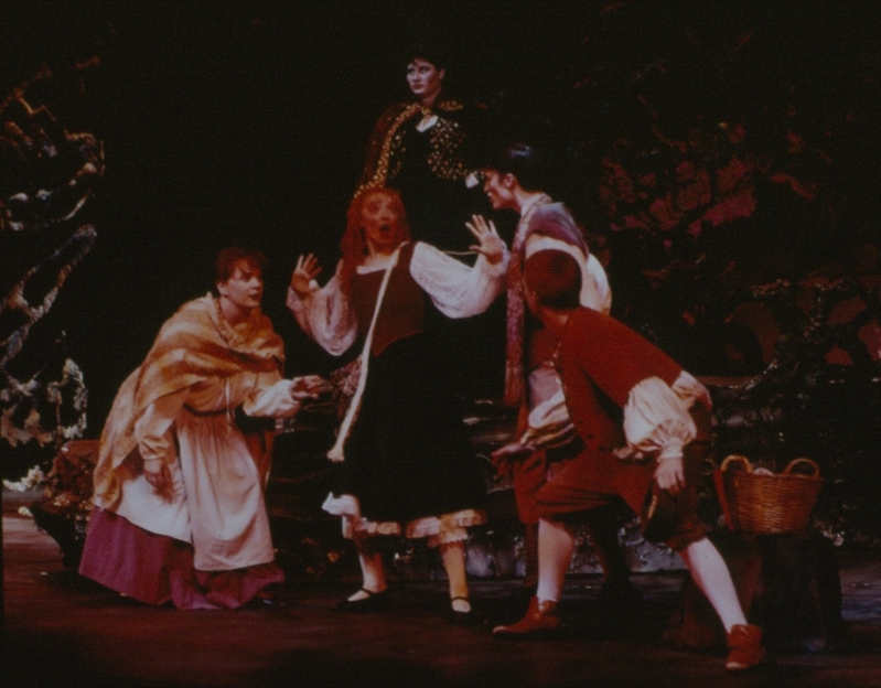 1995 Into the Woods 1