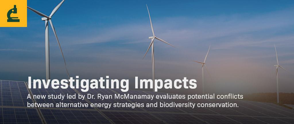 Wind turbines and solar panels.