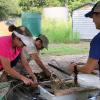 Lake Waco Wetlands News