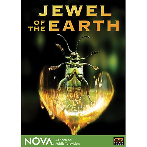 Nova Jewel of Earth