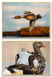Duck Stamp Art