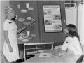 Program History - Diet Instruction Techniques